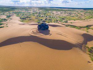 Sherp on Sand Dunes